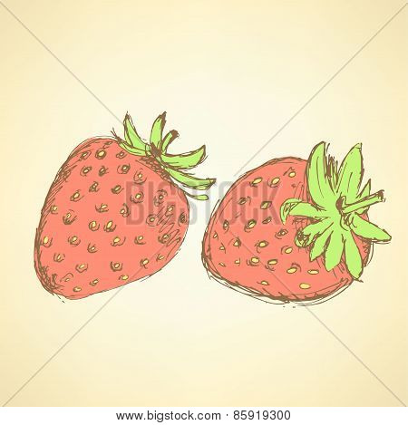 Sketch Tasty Strawberry In Vintage Style