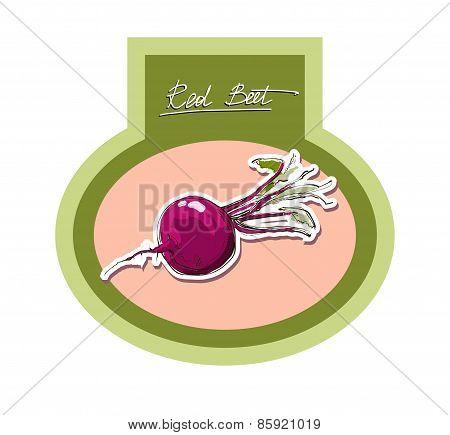Vector Illustration Label Stiker Of Red Beet