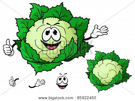 Happy smiling cartoon cauliflower vegetable
