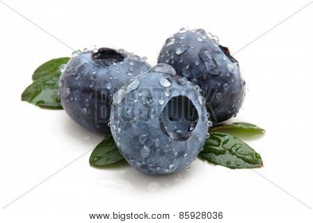 Blueberries With Drops.