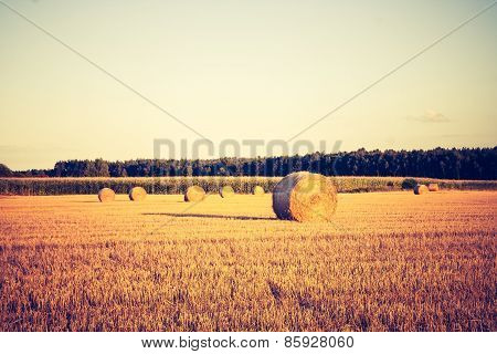 Vintage Photo Of Straw Bales On Stubble