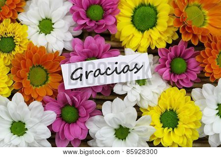 Gracias (which means thank you in Spanish) card with colorful Santini flowers