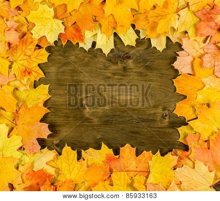 frame from autumn maple leaves on dark wood