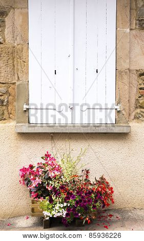 Flower Box Under Shutters In A Village  In The South Of France