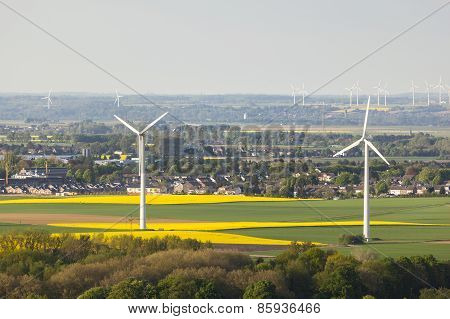 Wind Turbines And Rape Fields