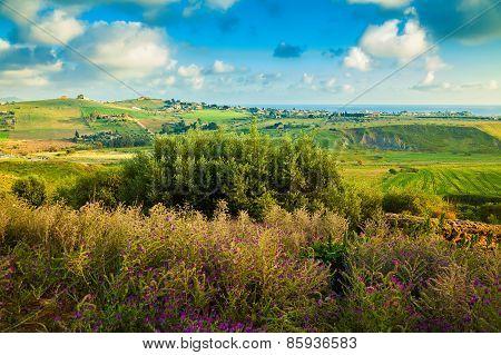 Spring Landscape Of The Sicily