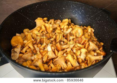 Chantarelles In A Frying Pan