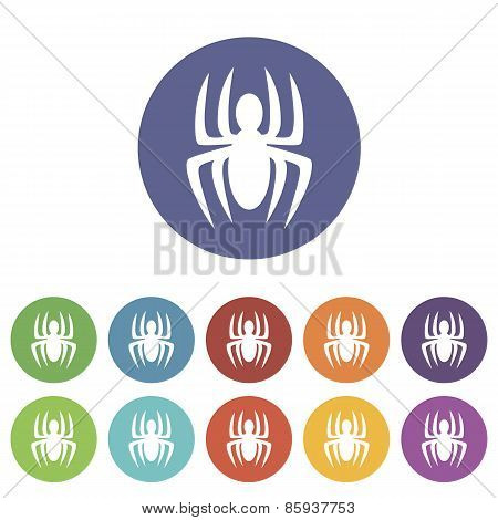 Spider flat icon