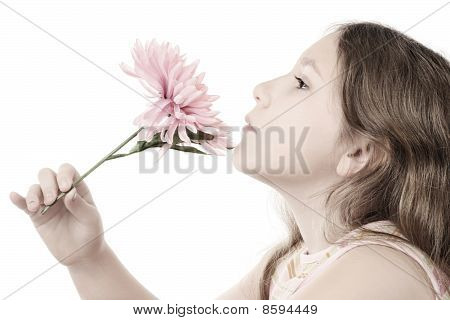 Romantic Girl With Pink Flower
