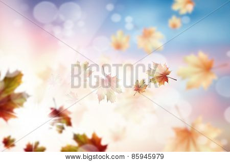 Conceptual image with colorful leaves flying in air