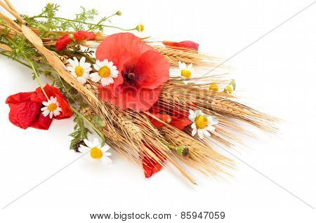 Wheats And Poppies In Bouquet