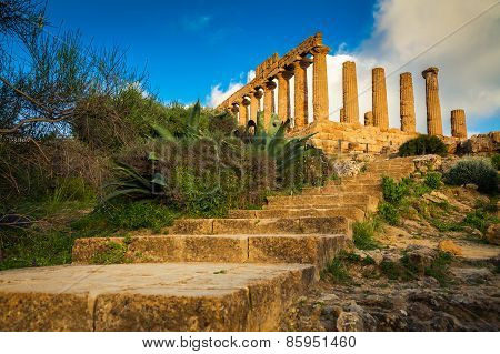 Stairs Leading To The Temple Of Juno