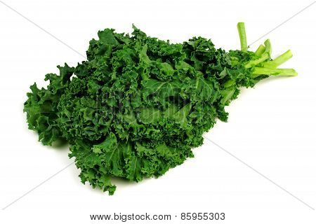 Bunch of kale over a white background