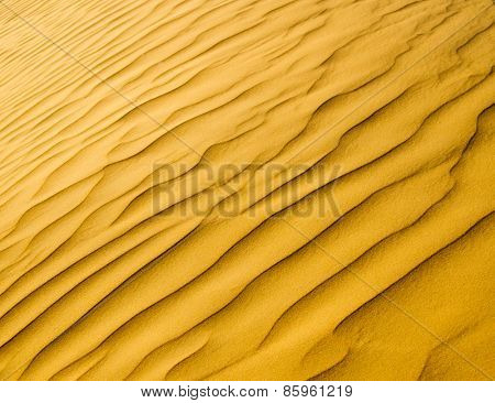 sand texture in Gold desert