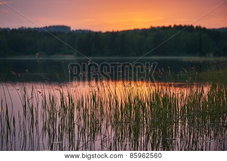 Finnish Lake At Sunset With Background Intentionally Blurred