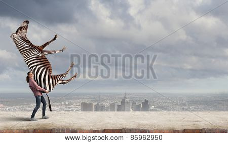 Funny young girl making effort to lift zebra