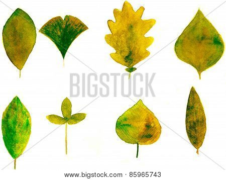 Set of yellow watercolor leaves