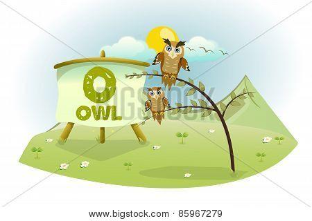 Funny Cartoon Alphabet O With Owl