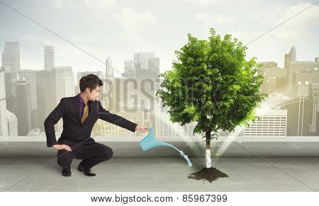 Businessman watering green tree on city background concept