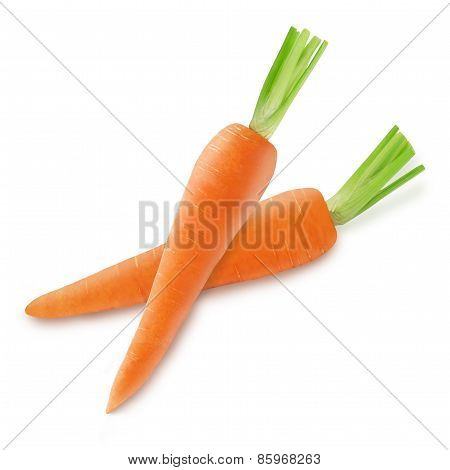 Two fresh orange carrot