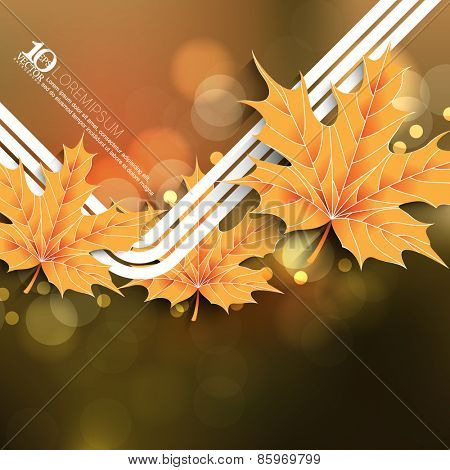 eps10 vector leaf on beautiful unfocused lights bokeh background