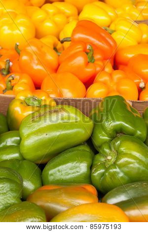 Three Colors Of Bell Peppers