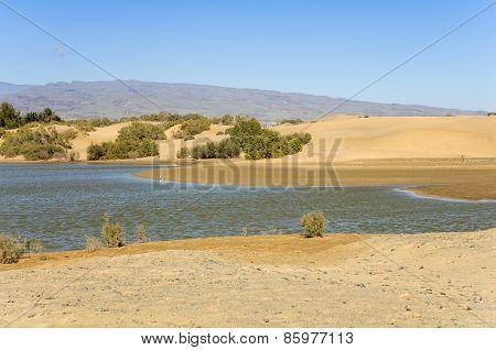 Lagoon At Maspalomas