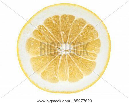 Slice Of Grapefruit On White Background