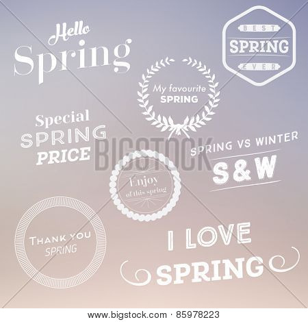 Set of spring typographic design elements Vector illustration