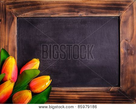 Tulips with chalkboard