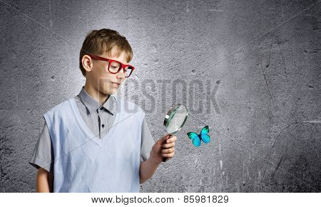 School boy examining butterfly with magnifying glass