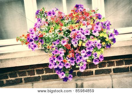 House Window With Colorful Petunias
