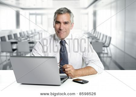 Businessman Senior Working Interior Modern Office