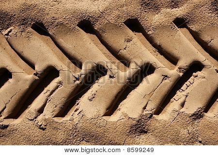 Industrial Tractor Footprint On Beach Sand