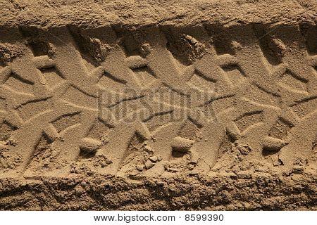 Quad Car Tires Footprint In Beach Sand