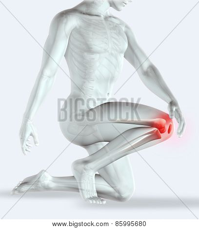 3D render of a male figure holding his knee in pain with muscle map