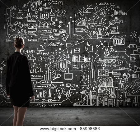 Rear view of businesswoman looking at business sketches on wall