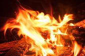foto of bonfire  - Camping Bonfire with sparks at night time - JPG