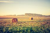 foto of hay bale  - Beautiful meadow landscape with hay bales and morning fog at sunrise - JPG