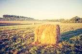 stock photo of hay bale  - Beautiful meadow landscape with hay bales and morning fog at sunrise - JPG
