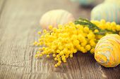 stock photo of mimosa  - Easter Background - JPG