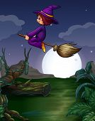 picture of broom  - Witch riding on a broom at night - JPG