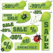 pic of water bug  - Spring sale background - JPG