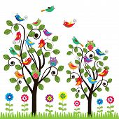 pic of fanny  - Colorful background with fanny birds and trees - JPG