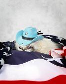 foto of ferrets  - Little cute ferret in a cowboy hat on the USA flag background - JPG