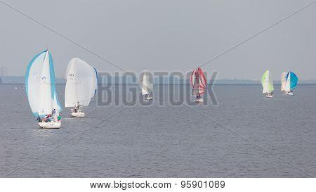 Sailboats Float