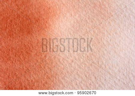 Macro Burnt Orange Watercolor  4