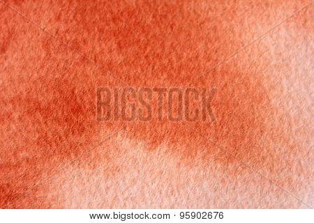 Macro Burnt Orange Watercolor  6