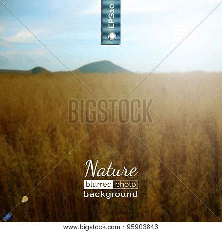Blurred photo background. Backdrop with nature for poster.