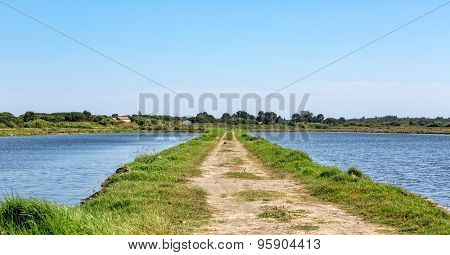 Summer Landscape With Lake And Road